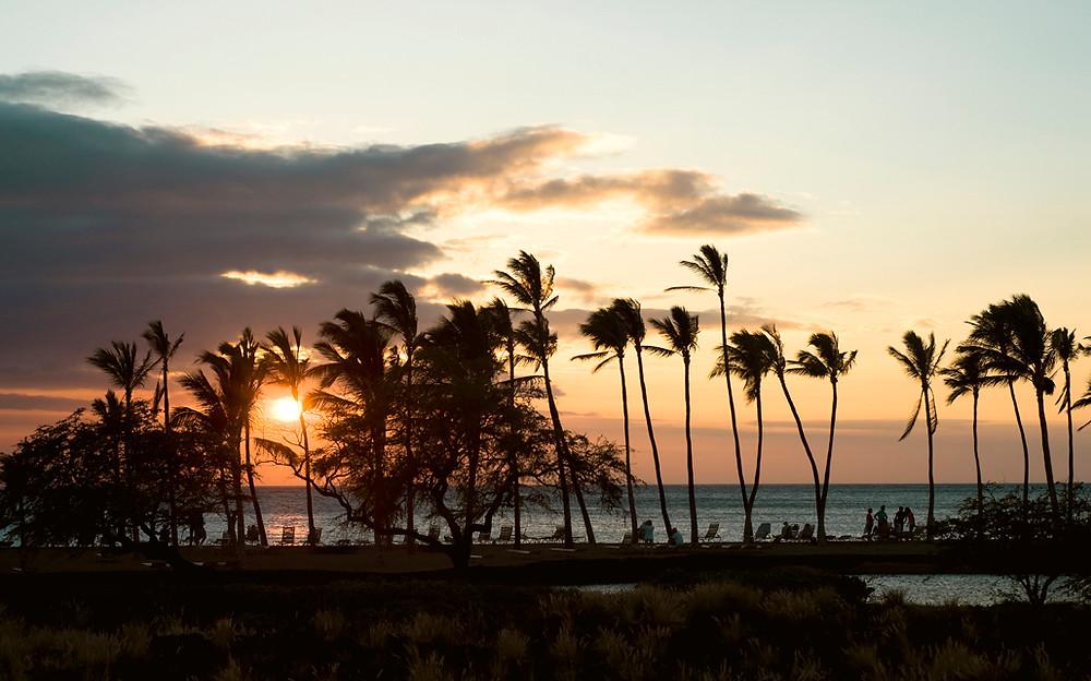 bigIsland_hawaii_0012 copy.jpg
