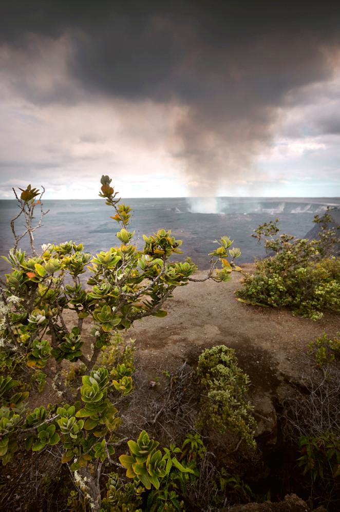 Hawaii_CardB_0121 copy.jpg