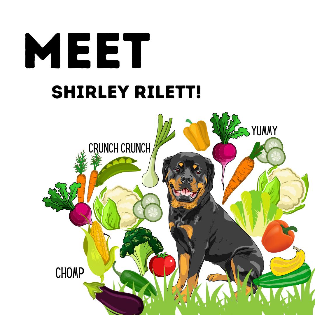 Meet Shirley Rilett (1).png