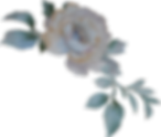 Rose rechts Logo.png