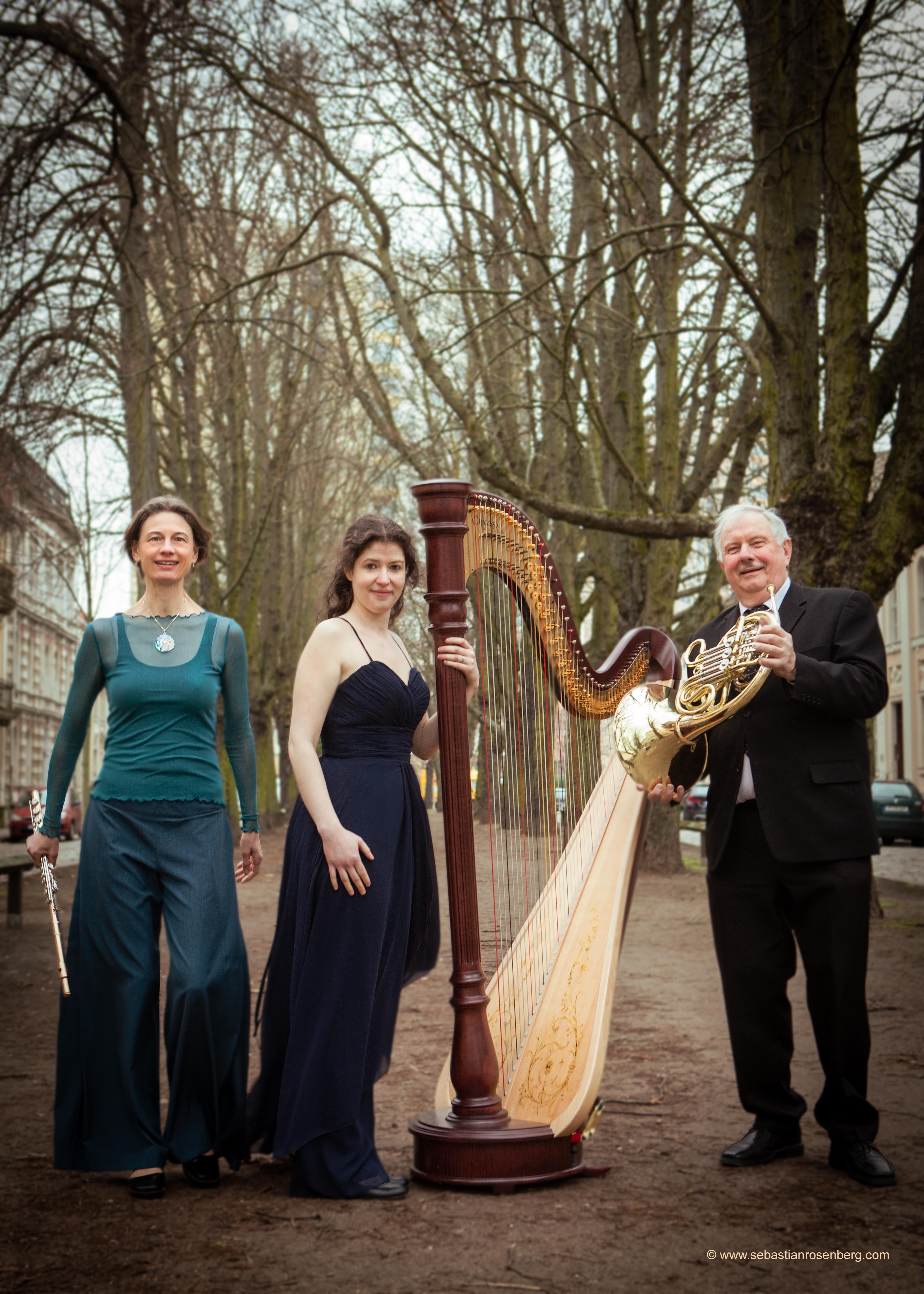 Trio Horn Harfe Flöte
