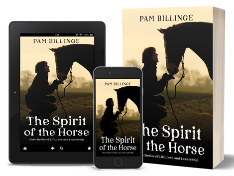 The Spirit of the Horse by Pam Billinge
