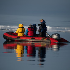 Arctic Midnight--Looking for Polar Bears