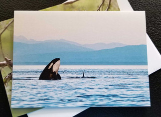 Pacific Northwest Card Pack
