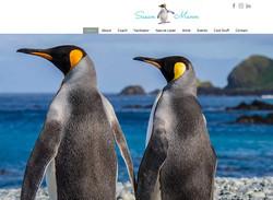 Susan Mann Website