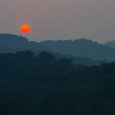 1135 Sunrise--Bwindi