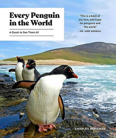 Every Penguin in the World: The Quest to See Them All
