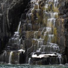 1936 Guillemot Cliffs--Arctic Waterfall--Svalbard