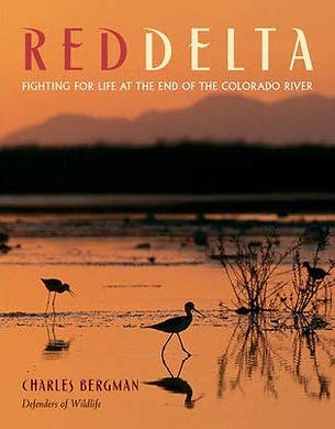 red delta.jpg