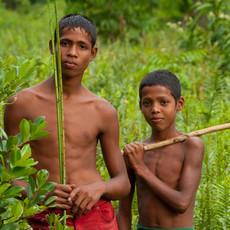 1316 Parrot Catchers--Guyana