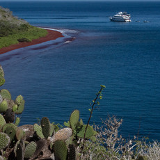 1005 Red Sand Beach--Rabida Island