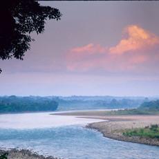 814 Napo River--Amazon Basin--Ecuador
