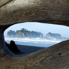 1413 Second Beach--LaPush--Washington Coast