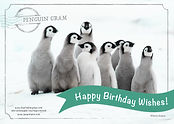 Penguin_Gram_–_Happy_Birthday.jpg