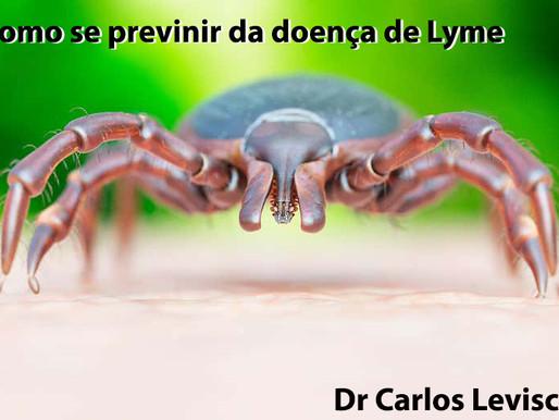 Sete maneiras para evitar a doença de Lyme
