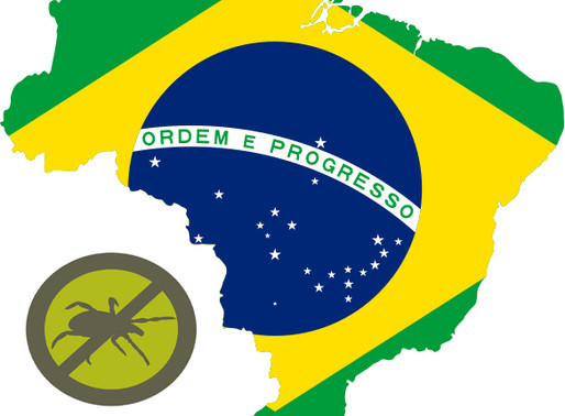 Doença de Lyme no Brasil