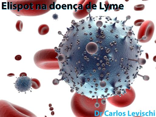 ELISPOT na doença de Lyme