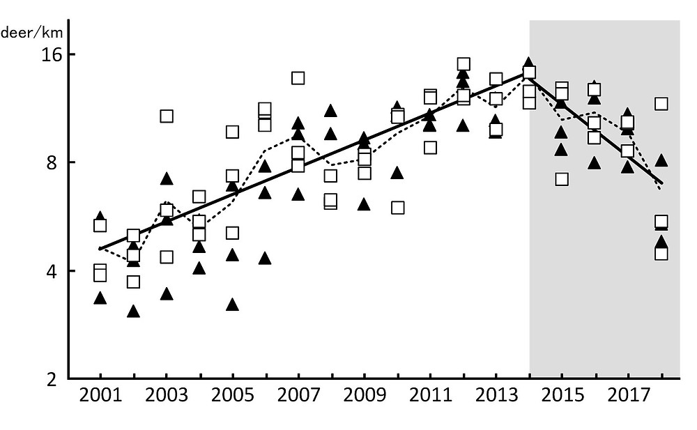 Changes in the yakushika population index in the World Natural Heritage Area of Yakushima from 2001 to 2018. The population density index peaked in 2014 and has been on a downward trend. Follow-up surveys confirmed that the downward trend is continuing, as of the summer of 2020 (solid triangles are numbers from Hanyama, open squares are numbers from Kawahara; Naoki Agetsuma, Yoshimi Agetsuma-Yanagihara, Hideki Sugiura. Credit: Japanese Journal of Conservation Ecology. April 20, 2021