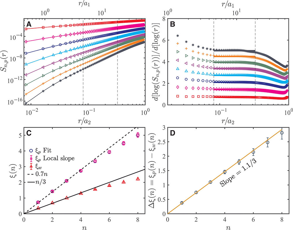 Scaling of high-order VSF in the elastic range at Rλ=480 and ϕ=40 ppm. (A) The nth-order (n=1 to 8, from top to bottom) longitudinal VSF in the polymer solution Sn, p(r) as a function of r/a2 (or r/a1, upper axis), the range between the two vertical dashed lines is the elastic range, the scaling exponent ξp(n) is obtained from the power-law fitting to this range. The absolute values of the velocity increments are used to calculate the VSF. (B) Local slope d[ log (Sn, p(r))]/d[ log (r)] of Sn, p(r) for n= 1 to 8 (from bottom to top) as a function of r/a2 (or r/a1, upper axis). The two vertical dashed lines mark the region where the local slope is nearly constant. The horizontal solid lines represent the average value within the two dashed lines. (C) Elastic range scaling exponents ξp as a function of n. ξp obtained from both the direct fitting and the local slope are plotted. The inertial range scaling exponents for pure water ξw(n) is also plotted for comparison. The dashed line is ξp(n) = 0.7n. The solid line is the K41 prediction, i.e., ξw(n) = n/3. (D) Δξ(n) = ξp(n) − ξw(n) as a function of n. The solid line is Δξ(n) = 1.1n/3.