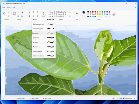 Microsoft finally opens access to new Paint for Windows 11