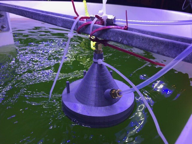 A new technology developed at UC San Diego uses chemical ionization mass spectrometry to alert algae growers when volatile gas signatures change, allowing them to harvest algae crops when under attack by contaminating organisms. Credit: UC San Diego