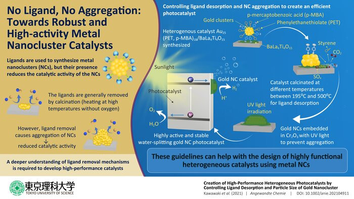 Scientists from Japan elucidate the ligand removal mechanism for gold nanoclusters and irradiate them with UV light to prevent aggregation. Credit: Tokyo University of Science