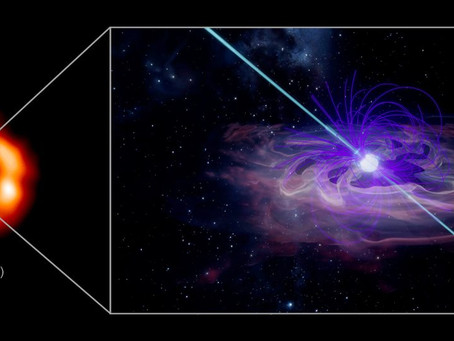 Researchers claimed that they finally found a squashed stellar core from a star explosion