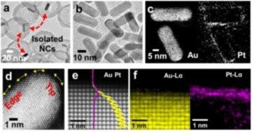 Transmission electron microscopy image of plasmonic–catalytic hybrid nanoreactors. Credit: POSTECH