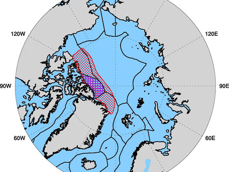 Arctic Ocean's last ice area may not survive the century