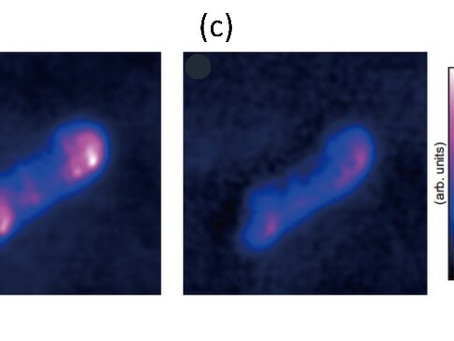 Visualizing atomic-scale structures with the optical force