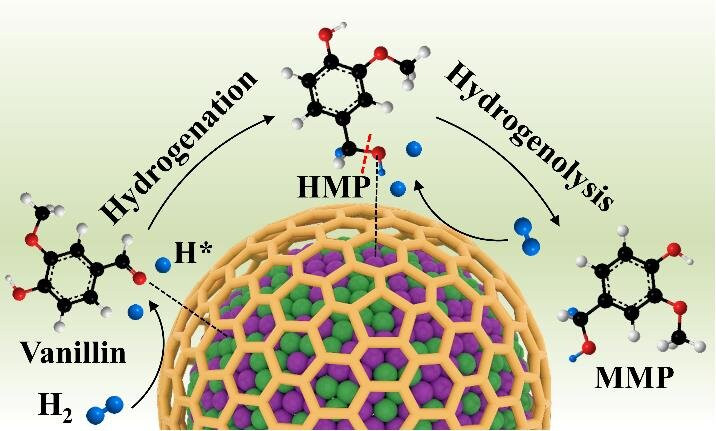 An encapsulated bimetallic Ni-Co alloying strategy is innovatively designed to enhance hydrodeoxygenation performance of biomass derivatives to the corresponding methylated products in water. Credit: Chinese Journal of Catalysis