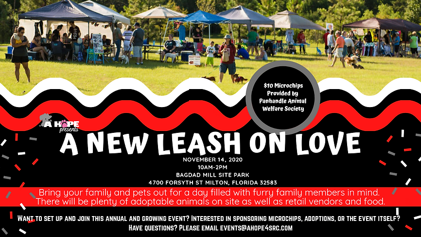 Park, dogs, tents, event, leashes