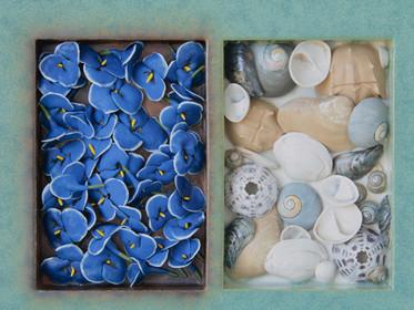 Blue Flowers Shells (Detail)