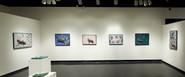 Retrospective Exhibition