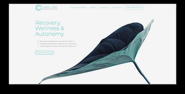 carelink-homepage.jpg