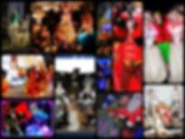 montage site.jpg