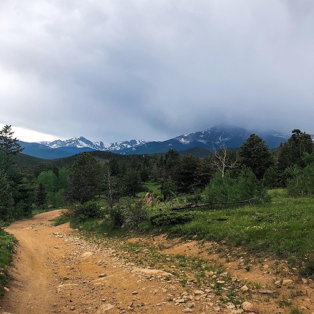 Cloudy mountains behind forested road
