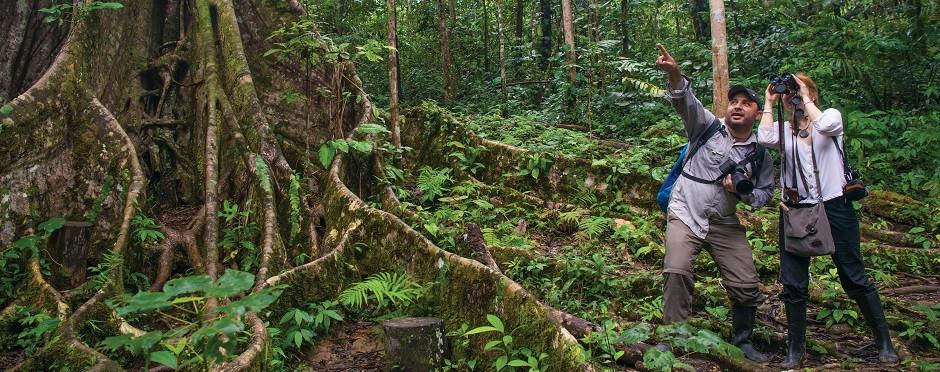 Exploring the Amazon jungle in Peru.