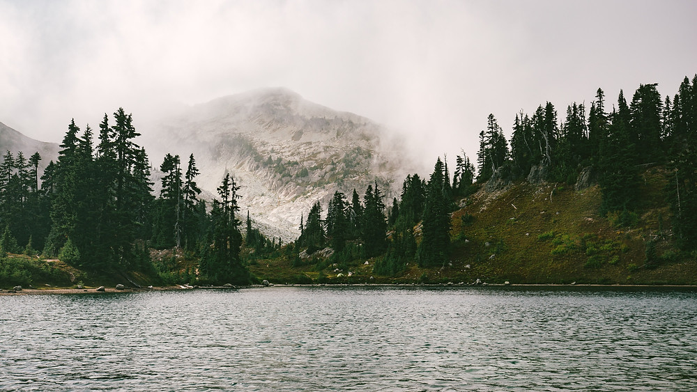 Misty mountain behind forested lake.