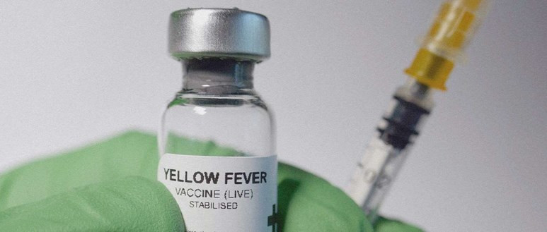 Vile of Yellow Fever Vaccine