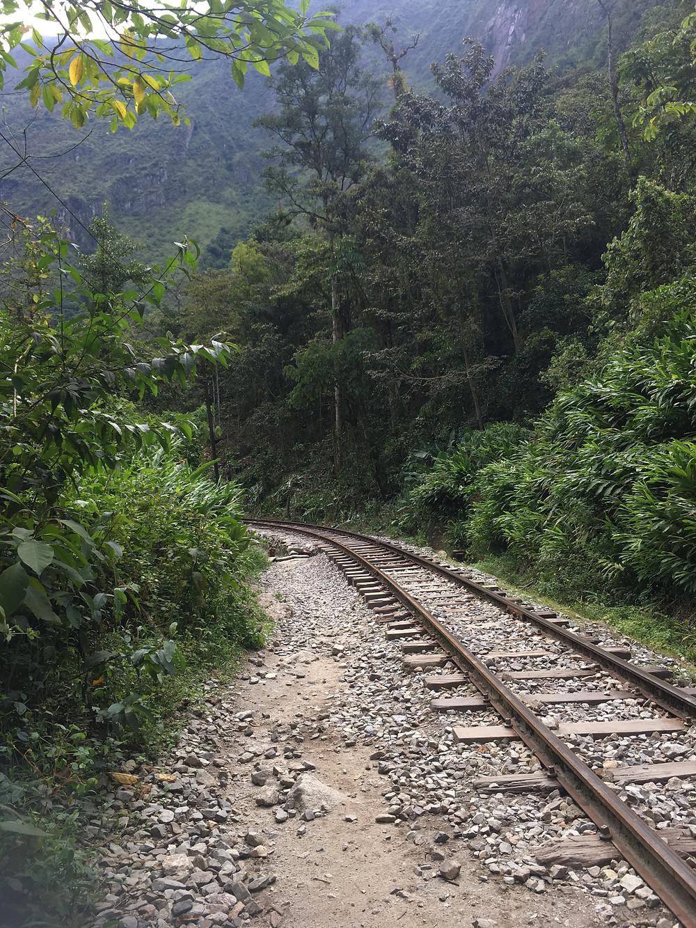 Train track in Peruvian jungle