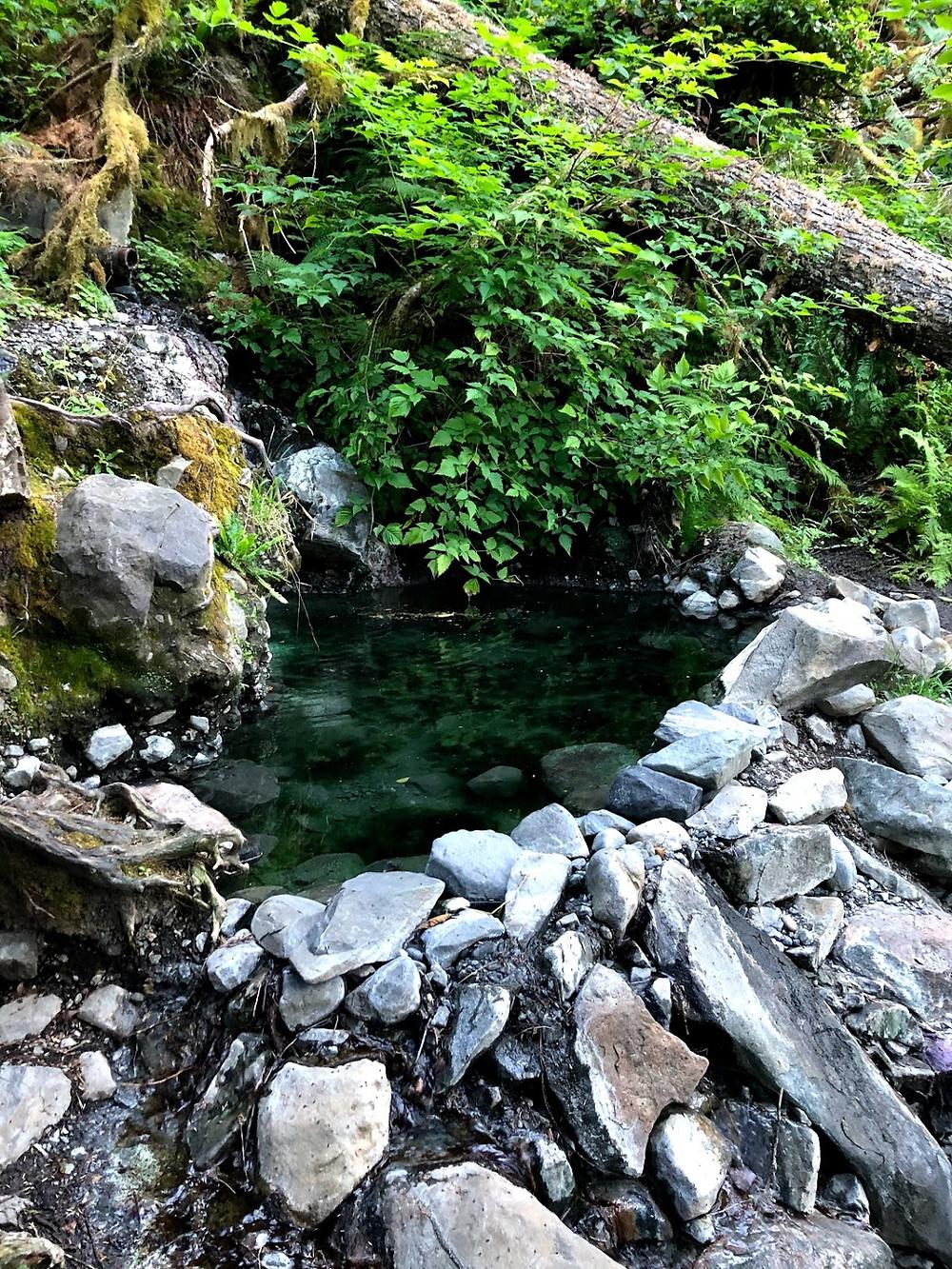Natural forest hot spring
