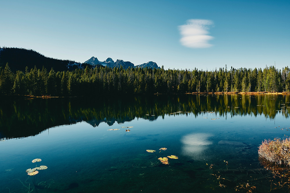 Mountain reflections on forested lake