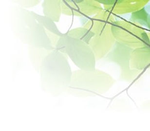 社長背景3.jpg