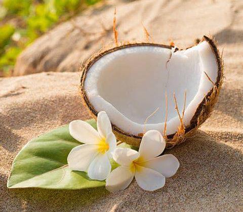 SPA ПРОГРАММА «Кокосовый Рай»
