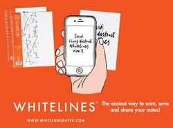 Whitelines 1.jpg