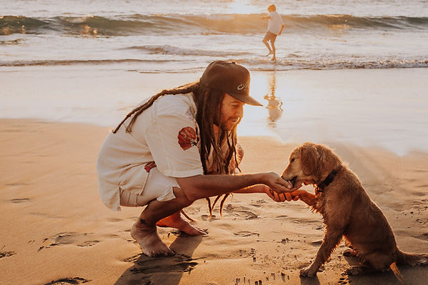 Gemma Rose Photography - Maui Photographer Family Beach Dog