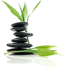 Back Into Balance Massage Therapy and Healing Energy