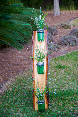 Pine Accented