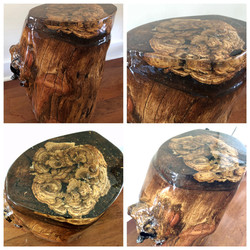 Oak Stump with Resin Top